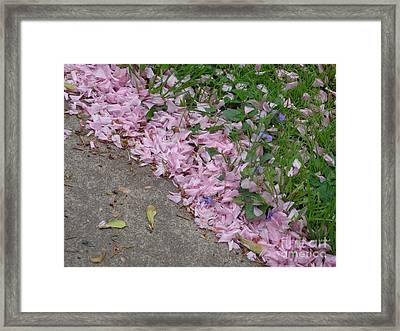 Framed Print featuring the photograph Abstract Diagonal Pink Petals by Christina Verdgeline