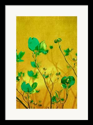 Turquoise Flower Framed Prints