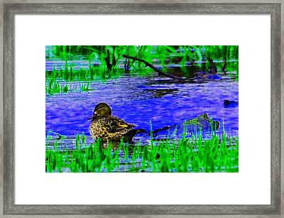 Abstract Duck Framed Print by Valarie Davis