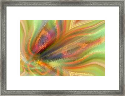 Abstract Feathers Framed Print