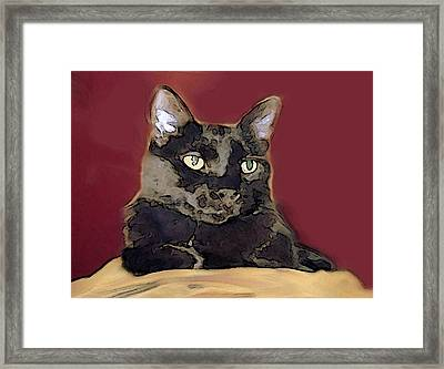 Abstract Feline Framed Print
