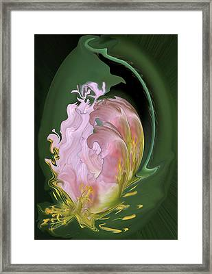 Abstract Flowers, Digitally Manipulated Framed Print by Jaynes Gallery