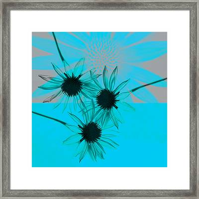 abstract - flowers - Flower Collage  Framed Print by Ann Powell
