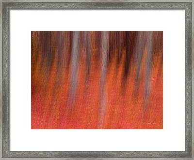 Abstract Forest 1 Framed Print by Leland D Howard