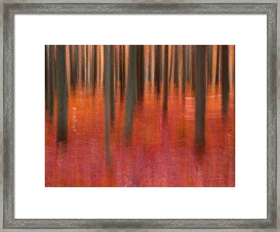 Abstract Forest 2 Framed Print by Leland D Howard