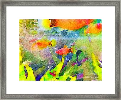 Abstract Goldfish Fish Bowl Aquarium Watercolor 1 Framed Print by Beverly Claire Kaiya