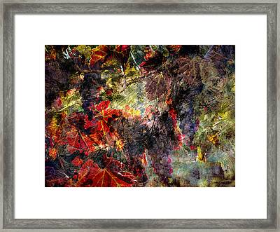 Framed Print featuring the photograph Abstract Grapes On Vine Number Two by Bob Coates