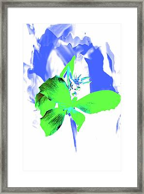 Abstract Green Framed Print by Cathie Tyler