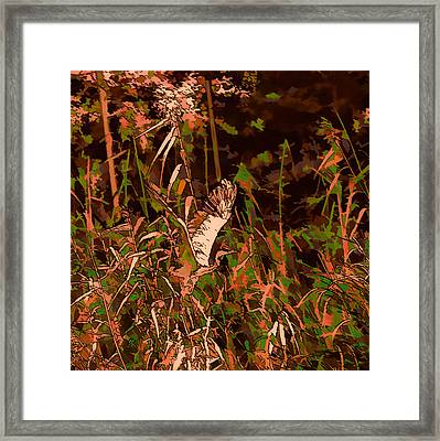 Abstract Heron   Leif Sohlman Framed Print by Leif Sohlman
