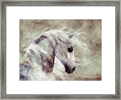 Abstract Horse Portrait Framed Print by Elle Arden Walby