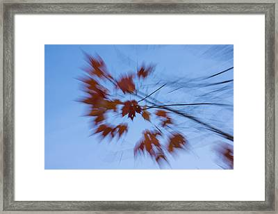 Abstract Impressions Of Fall - Autumn Wind Melody Framed Print by Georgia Mizuleva