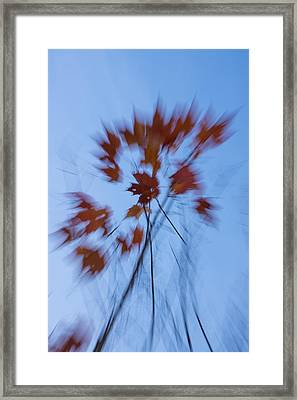 Abstract Impressions Of Fall - The Song Of The Wind Framed Print by Georgia Mizuleva
