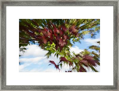 Abstract Impressions Of Fall - Vibrant Reds And Greens Framed Print by Georgia Mizuleva
