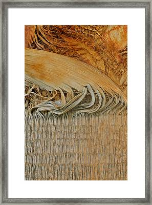 Abstract In Gold And Brown Framed Print