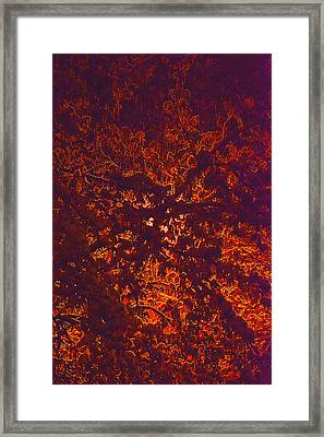 Abstract In Snow And Leaves Framed Print by Michael Fox