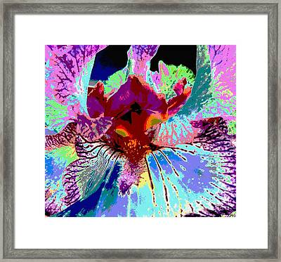 Framed Print featuring the photograph Abstract Iris by Sally Simon