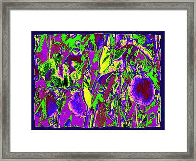 Abstract Irises Framed Print by Will Borden