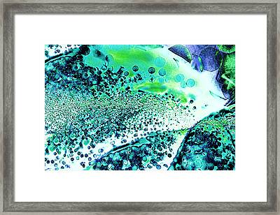 Abstract Leaf And Light I - Blue Green Framed Print by Natalie Kinnear