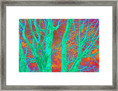 Abstract Maplei Framed Print by Kathy Sampson