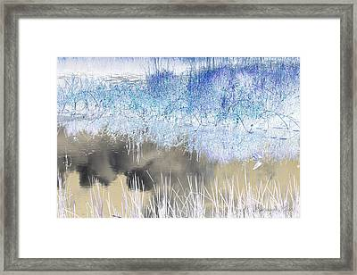 Abstract Marsh  Framed Print