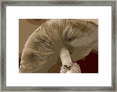 Framed Print featuring the photograph Abstract Mushroom by Kathy Ponce
