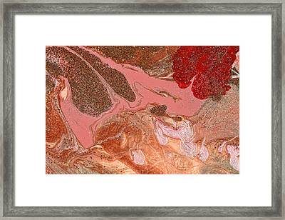 Abstract - Nail Polish - The Flow Of The Universe Framed Print by Mike Savad