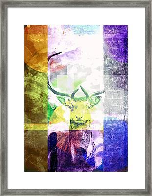 Abstract Nature Deer Portrait Framed Print