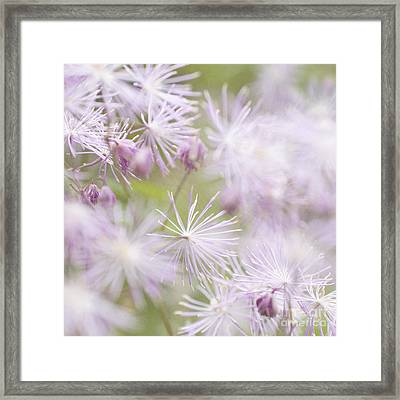 Abstract Nature Pink Burst Framed Print by Circe Lucas