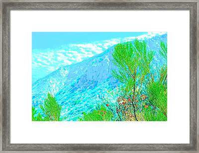 Abstract Nature Framed Print