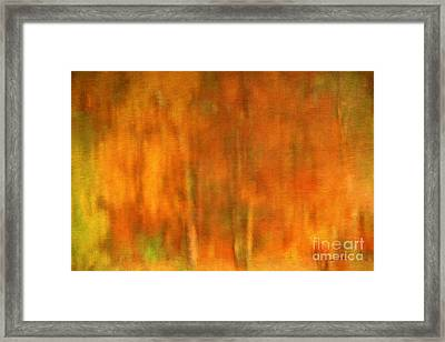 Abstract Of Autumn Framed Print by Darren Fisher