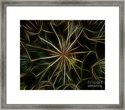 Abstract Of Nature 2 Framed Print by Vivian Christopher