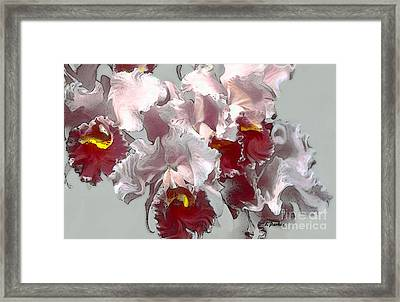 Abstract Orchid Framed Print by Linda  Parker