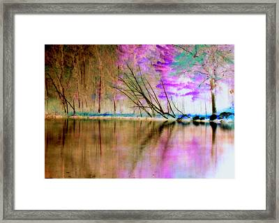 Abstract Park Beauty Framed Print by Lori Pessin Lafargue