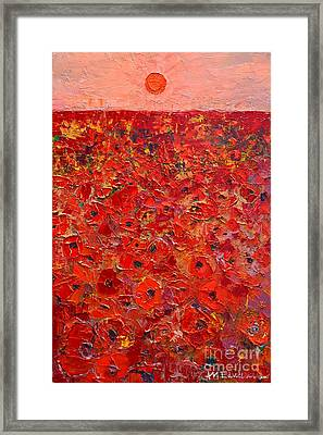 Abstract Red Poppies Field At Sunset Framed Print by Ana Maria Edulescu