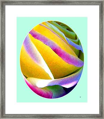 Abstract Rose Oval Framed Print by Will Borden