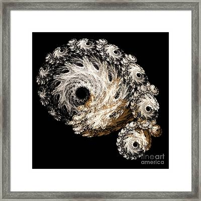 Abstract Seashell Framed Print by Andee Design