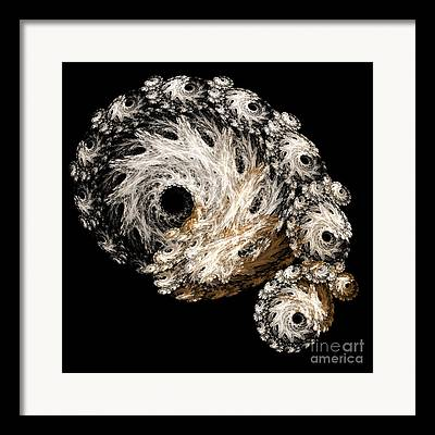 Sea Shell Fine Mixed Media Framed Prints