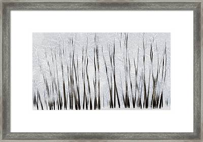 Abstract Trees With Motion Blur Framed Print by Ron Harris