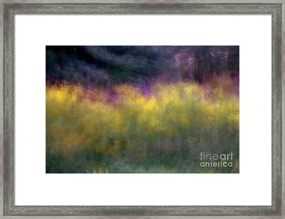 Abstract Viii Goldenrod Framed Print