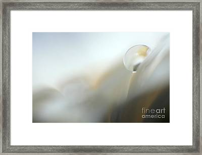 Abstract White Germini Framed Print by Eden Baed
