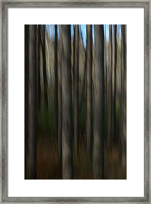 Abstract Woods Framed Print