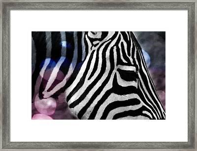 Abstract Zebra In Oil Framed Print