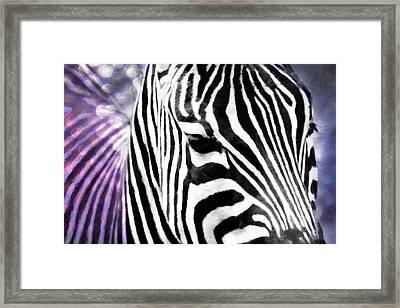 Abstract Zebra Framed Print