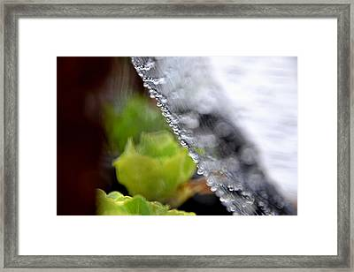 Abstract03 Framed Print