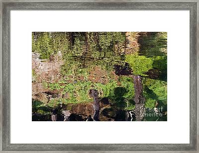 Framed Print featuring the photograph Abstracted Reflection by Kate Brown