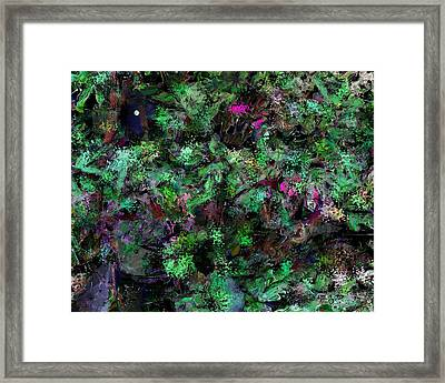 Abstraction 121514 Framed Print by David Lane