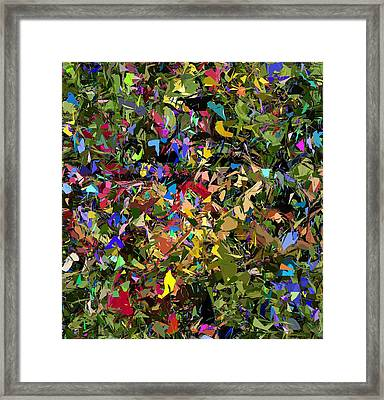 Abstraction 2 0211315 Framed Print by David Lane