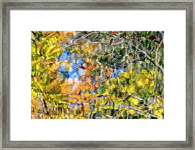 Abstracts Of Nature Framed Print by Frozen in Time Fine Art Photography