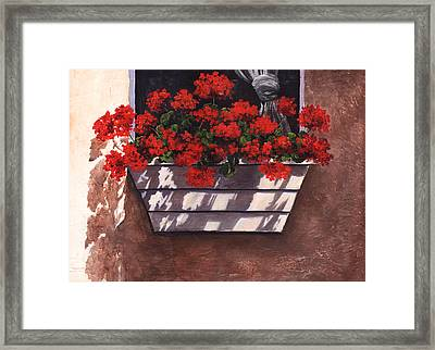 Abundance Framed Print by Terri  Meyer
