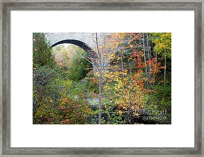 Acadia Carriage Bridge Framed Print by Chris Scroggins